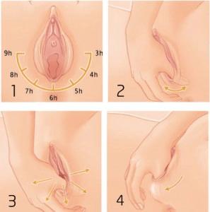 Stretching perineale - Aspirante Mamma